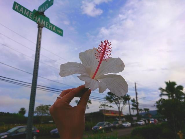 ハワイ美女199_Anna